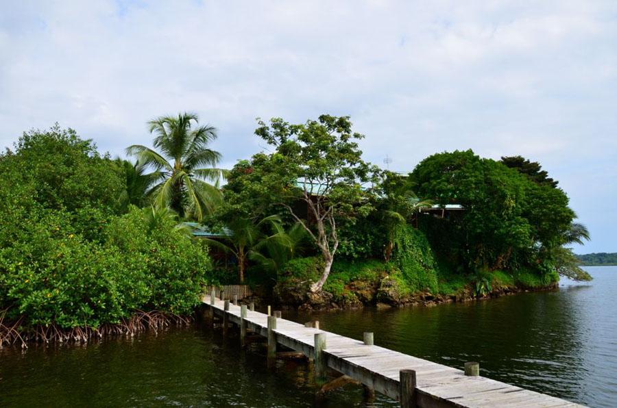 GARDEN OF EDEN Bocas Del Toro Bocas6